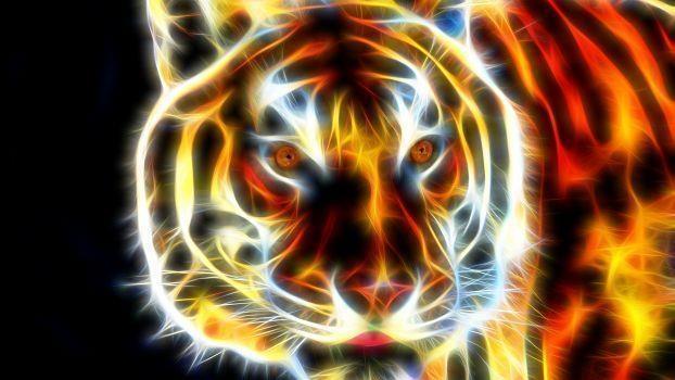Regulation des Kapitalismus im Umbruch: Den Tiger reiten!