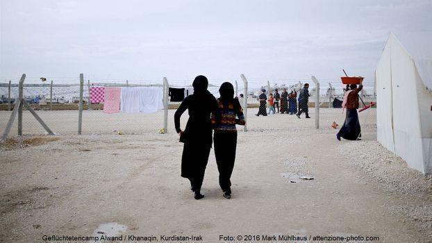 Inmitten von Krieg, Konflikt und Flucht
