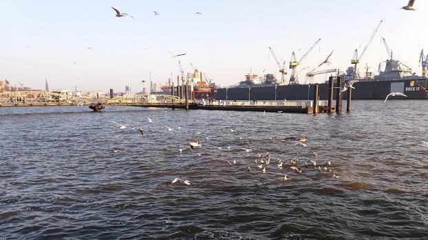 Wo am Hafen die Schiffe und die Fische schlafen...