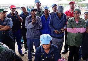 Der lange Schatten der Apartheid und neue Mobilisierung im ländlichen Raum