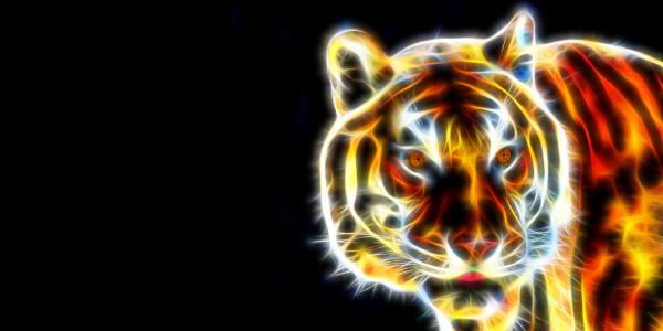 Regulation des Kapitalismus im Umbruch: Den Tiger reiten! Berlin, 18.-19 Oktober